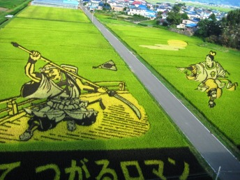 rice paddy art